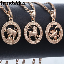 Trendsmax 12 Zodiac Constellations Pendants Necklaces For Women Men 585 Rose Gold Men Jewelry 2018 Fashion Birthday Gifts KGPM16